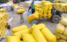 Hơn 38.000 tấn gạo được mở tờ khai vào 0 giờ ngày 26-4