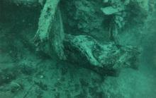 Mộ phần của 300 quái vật cổ đại chứa thần dược cho con người