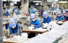 Phát động cuộc thi Bác Hồ với ngành dệt may Việt Nam và công nhân lao động