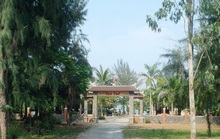 Quảng Bình: Thành phố nương tay, 6 nhà hàng lấn  11.000m2 đất vàng ven biển