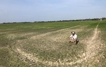 Tìm kiếm nguồn nước ngọt cho dân ĐBSCL, Tây Nguyên