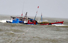 Tìm kiếm tàu cá và 8 ngư dân mất tích ở vùng biển Hoàng Sa