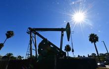 Chưa từng có trong lịch sử: Giá dầu thô Mỹ xuống mức âm