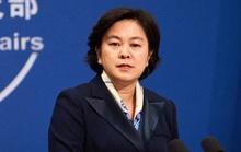 Covid-19: Mỹ ngừng tài trợ WHO, Trung Quốc rót ngay 30 triệu USD