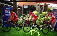 Cuộc đua xe đạp thực tế ảo tranh cúp truyền hình TP HCM - Niềm tin chiến thắng