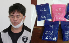 Quảng Bình: Bắt đối tượng ngụy trang 1.000 viên ma túy trong chậu cây cảnh