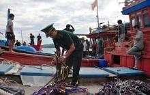 Tàu hải cảnh Trung Quốc đâm chìm tàu cá Việt Nam