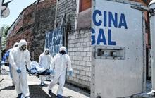 Covid-19: Cảnh tượng buồn trên đường phố  Ecuador
