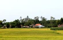 Chuyện làng Gia Hội