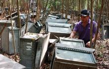 Đập phá trại nuôi ong người khác vì sợ lây lan dịch Covid-19