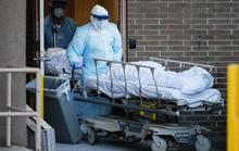Covid-19: Ca nhiễm ở Mỹ tăng vọt, Tổng thống Trump chỉ trích nặng nề WHO