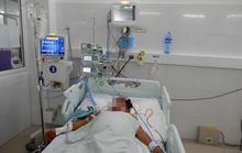 Gia đình 3 người bị ngộ độc nấm ở Quảng Ngãi đã tử vong