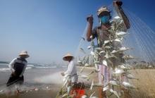 IMF: Kinh tế Việt Nam sẽ hồi phục mạnh