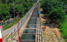 Nhiều sai phạm tại huyện Củ Chi, TP HCM