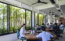 Làm thế nào để xây dựng môi trường làm việc tuyệt vời?