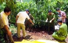 Đang xét xử vụ án chém chết 3 bà cháu chôn xác trong vườn cà phê