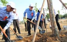 TP HCM phát động Tết trồng cây nhớ ơn Bác Hồ