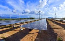 Nhà đầu tư ngoại thâu tóm dự án điện mặt trời, Bộ Công Thương nói gì?