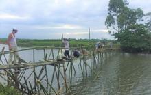 """Cây cầu """"lạ"""" bắc qua sông Bồ"""