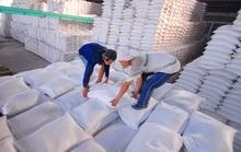 Cần chế tài doanh nghiệp xù cấp gạo dự trữ