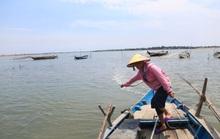 Phó Chủ tịch HĐND Quảng Nam: Lấp vịnh An Hòa phải hết sức cẩn thận!