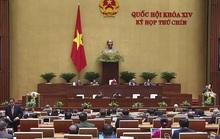 Quốc hội bàn thảo công tác xây dựng pháp luật