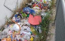 Dạ cầu thành nơi... đổ rác