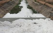 Đề xuất xử phạt Công ty CP bột giặt LIX  1 tỉ đồng vì gây ô nhiễm