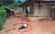 Dùng dao đâm 2 vợ chồng hàng xóm tử vong rồi tự sát tại chỗ