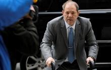 """""""Ông  trùm"""" Hollywood Harvey Weinstein tiếp tục bị kiện hiếp dâm"""