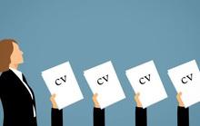 Gây ấn tượng với nhà tuyển dụng bằng hồ sơ xin việc chỉ trong 7,4 giây