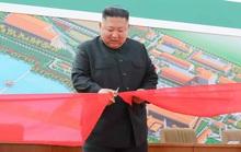 Mỹ tiết lộ nguyên nhân ban đầu vụ nổ súng giữa Triều Tiên - Hàn Quốc