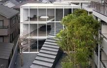 Ngôi nhà ấn tượng với cầu thang xuyên từ ngoài vào trong