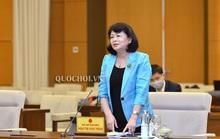 Phó Chủ tịch nước nêu vụ Đường Nhuệ tại Ủy ban Thường vụ Quốc hội