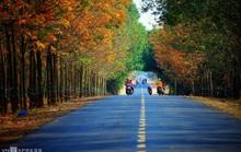 Vẻ đẹp Tây Ninh