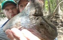 Dạo bờ sông, cặp đôi đào trúng phần còn lại của thủy quái hàng triệu tuổi