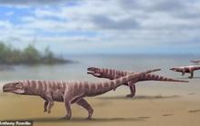Quái vật cá sấu lai khủng long bạo chúa, dấu chân như người ở Hàn Quốc