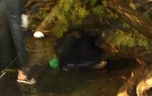 Vụ người đàn ông bị cây đè chết trên đường Tô Hiến Thành: Nhánh cây gãy không lớn?
