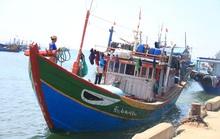 Vụ tàu cá Quảng Ngãi bị tàu Trung Quốc đâm hỏng: Yêu cầu phía Trung Quốc điều tra, xác minh