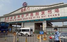 Trung Quốc trước nỗi lo tái bùng phát đại dịch