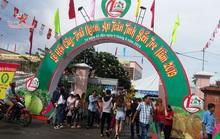 2 lý do khiến Bến Tre dừng tổ chức lễ hội trái cây ngon, an toàn