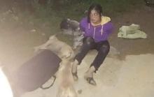 Bắt đôi nam nữ trộm 30 con chó, mèo trong đêm