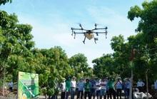Người dân thích thú khi lần đầu tiên Khánh Hòa dùng máy bay phun phân bón