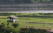 Bị Triều Tiên ép, Hàn Quốc vẫn đợi như thú săn mồi