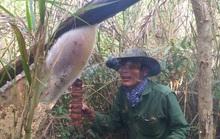 CLIP: Nghề gác kèo ong rừng U Minh Hạ đón nhận tin rất vui