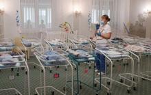 Bên trong các lò đẻ thuê ở Ukraine