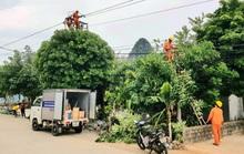 Một hộ dân bị Điện lực ghi nhầm lượng điện gấp 33 lần, lên đến 58 triệu đồng/tháng