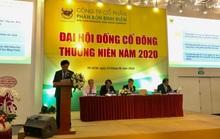 Bình Điền lập kế hoạch phục hồi lợi nhuận trong năm 2020