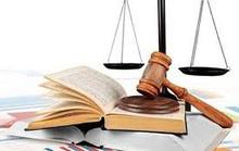Cần đa dạng các hình thức xử phạt vi phạm hành chính