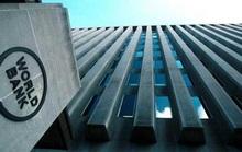 Ngân hàng Thế giới cấm vận Công ty Sao Bắc Đẩu vì gian lận dự án